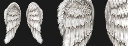 Cool wings psd layered material